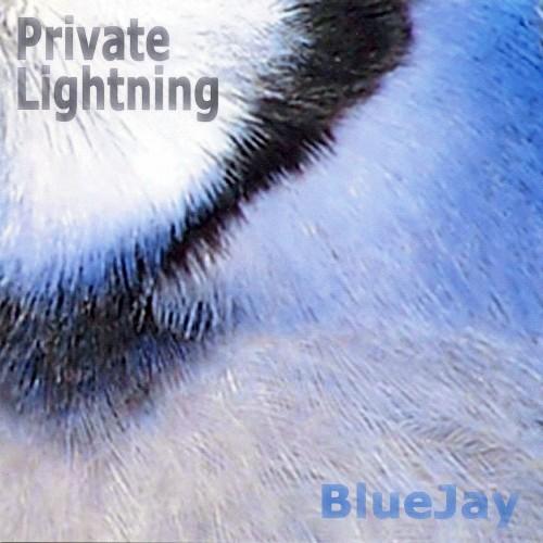 Blue Jay Studios